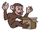 Package Monkey Small